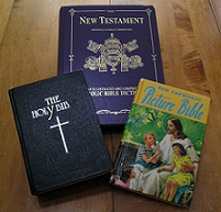 Catholic Bible: Haydock, Douay, and Children's Bible