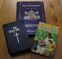 Catholic Bible: Haydock, Douay, and Children's Bible