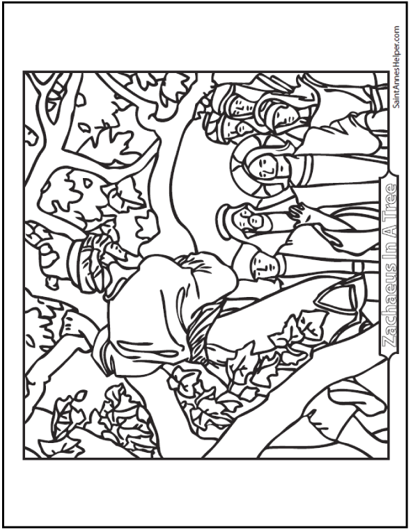 Catholic Bible Story Coloring Pages - Zachaeus Climbed Up In A Sycamore Tree